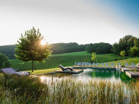 Sonnenaufgang am Pool vom Ratscher Landhaus
